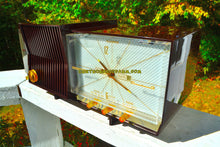 Load image into Gallery viewer, SOLD! - Jan 21, 2018 - ESPRESSO Marbled Mid Century Retro 1960 Silvertone Model 7025 AM Clock Radio Totally Restored! - [product_type} - Silvertone - Retro Radio Farm