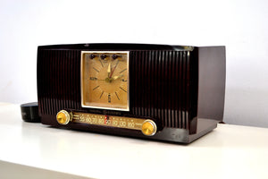 SOLD! - Dec. 3, 2018 - Amazon Echo Dot Ready Elegant 1955 General Electric Model 551 Vintage AM Clock Radio - [product_type} - General Electric - Retro Radio Farm
