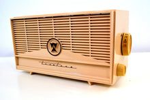 Load image into Gallery viewer, Vintage 1960 Truetone Model 2063 AM Tube Radio