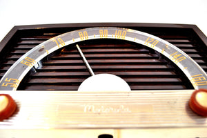 Sienna Brown 1950 Motorola Model 59X Tube AM Antique Radio Nice Performer Very Easy On The Eyes and Ears!