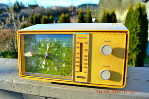 SOLD! - Nov. 13, 2014 PSYCHEDELIC Mobius 1960's RCA Model RZD 403N - [product_type} - RCA Victor - Retro Radio Farm