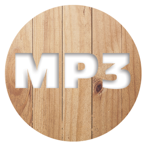 Add MP3 - [product_type} - Retro Radio Farm Service - Retro Radio Farm