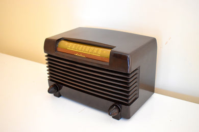 Timber Brown Bakelite 1946 Wards Airline Model 64BR-1503B AM Vacuum Tube Radio Excellent Condition Sounds Marvelous!