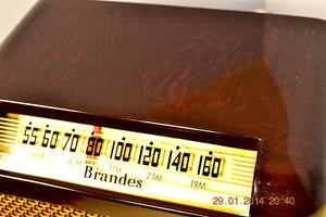 SOLD! - Oct 31, 2014 - BEAUTIFUL PRISTINE Rare Art Deco Retro 1946-48 BRANDES AM Tube Radio Works! Wow! , Vintage Radio - Brandes, Retro Radio Farm  - 6