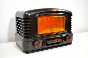 Gilded Age Black Bakelite 1941 Airline 14BR-525A AM Vacuum Tube AM Radio Excellent+ Condition!