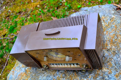 WALNUT BROWN Mid Century Jetsons 1958 General Electric Model C415 Tube AM Clock Radio Works Great!