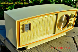 SOLD! - Nov 29, 2014 - AVOCADO and white AM/FM Retro Vintage 1960's Sears Model 2027 Solid State Radio WORKS! , Vintage Radio - Sears, Retro Radio Farm  - 3
