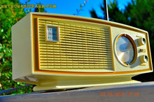 Load image into Gallery viewer, SOLD! - Nov 29, 2014 - AVOCADO and white AM/FM Retro Vintage 1960's Sears Model 2027 Solid State Radio WORKS! , Vintage Radio - Sears, Retro Radio Farm  - 4
