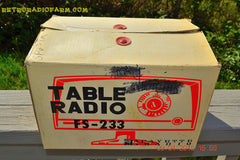 SOLD! - April 21, 2015 - NEW OLD STOCK PINK And White Marbelized Jetson Style Radio Lafayette Model FS-233 AM Tube Radio Unbelievable! , Vintage Radio - Lafayette, Retro Radio Farm  - 11