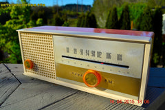 SOLD! - May 15, 2015 - CARNATION PINK Retro Jetsons early 60s Arvin Model 30R12 Tube FM RADIO Works! , Vintage Radio - Arvin, Retro Radio Farm  - 4