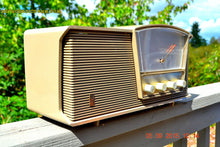 Load image into Gallery viewer, SOLD! - Sept 10, 2015 - LOFT GRAY Mid Century Retro Vintage 1964 Motorola Model B6N AM/FM Tube Radio Works Great! , Vintage Radio - Motorola, Retro Radio Farm  - 6