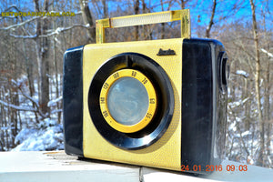 SNAKESKIN Haute Couture Vintage Antique Mid Century 1952 Arvin Model 654P Portable Tube AM Radio Restored and Very Rare! , Vintage Radio - Arvin, Retro Radio Farm  - 2