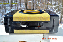 Load image into Gallery viewer, SNAKESKIN Haute Couture Vintage Antique Mid Century 1952 Arvin Model 654P Portable Tube AM Radio Restored and Very Rare! , Vintage Radio - Arvin, Retro Radio Farm  - 10