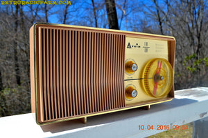 SOLD! - Dec 2, 2019 - MAUVE PINK Retro Mid Century Jetsons Vintage 1962 Arvin Model 2585 AM FM Tube Radio Amazing! - [product_type} - Arvin - Retro Radio Farm