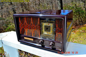 SOLD! - Dec. 13, 2017 - RARE 1949 CONSTELLATION Model 1135 AM Swirly Brown Bakelite Tube Radio Totally Restored! - [product_type} - Constellation - Retro Radio Farm