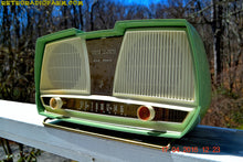 Load image into Gallery viewer, SOLD! - Dec. 8, 2017 - SAGE GREEN Wonder Mid Century Retro Antique 1959 Rogers Majestic AM Vacuum Tube Radio Totally Restored! - [product_type} - Philips - Retro Radio Farm
