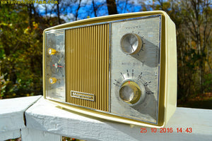 SOLD! - Apr 15, 2017 - GOLD and Ivory Mid Century Retro Vintage 1966 Magnavox Model C006 Mardi Gras Tube Clock Radio Kinda Rough Shape - [product_type} - Magnavox - Retro Radio Farm