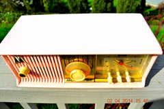 SOLD! - June 3, 2014 - BEAUTIFUL POWDER PINK Retro Jetsons 1957 Motorola 57CC Tube AM Clock Radio WORKS! , Vintage Radio - Motorola, Retro Radio Farm  - 5