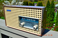 SOLD! - Dec 24, 2014 - SAHARA TAUPE Atomic Age Vintage 1957 General Electric T-166 Tube AM Radio WORKS! , Vintage Radio - General Electric, Retro Radio Farm  - 6