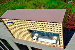 SOLD! - Dec 24, 2014 - SAHARA TAUPE Atomic Age Vintage 1957 General Electric T-166 Tube AM Radio WORKS! , Vintage Radio - General Electric, Retro Radio Farm  - 9