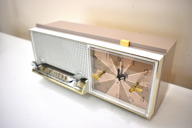 Sandstone 1964 Philco Model L785-124 AM Vacuum Tube Radio Sounds Lovely Drop Dead Mint Condition!