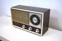 Load image into Gallery viewer, Bluetooth Ready To Go - 1960s Lloyds Vornado AM FM Model TM-77 Vacuum Tube Radio Near Mint Condition!