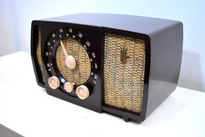 Savanna Brown and White 1955 Zenith Y724 AM/FM Tube Radio Gorgeous and Sounds Magnifico!