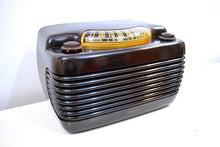 Load image into Gallery viewer, Hippo Brown Bakelite Vintage 1946 Philco Model 46-420 AM Radio Flawless and Sounds Amazing!