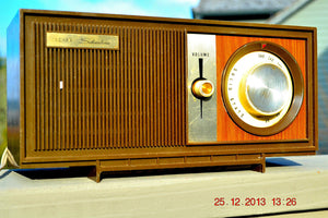 SOLD! - March 20, 2014 - RETRO Modern Fugly 1960's Silvertone Model 6002 Brown Woodgrain Radio Works! , Vintage Radio - Silvertone, Retro Radio Farm  - 2