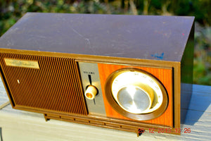 SOLD! - March 20, 2014 - RETRO Modern Fugly 1960's Silvertone Model 6002 Brown Woodgrain Radio Works! , Vintage Radio - Silvertone, Retro Radio Farm  - 4