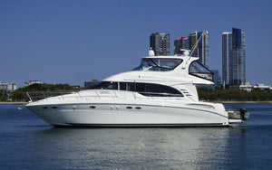 Sea Ray M/Y & Sedan Bridge