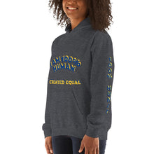 Load image into Gallery viewer, 100% Human Unisex Hoodie - Shannon Alicia LLC