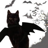 Halloween Cat Costume Small Pet Cat Bat Wings - caturdayco