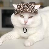 Stylish Pet Hat - caturdayco