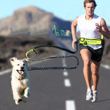 Handsfree Bungee Leash