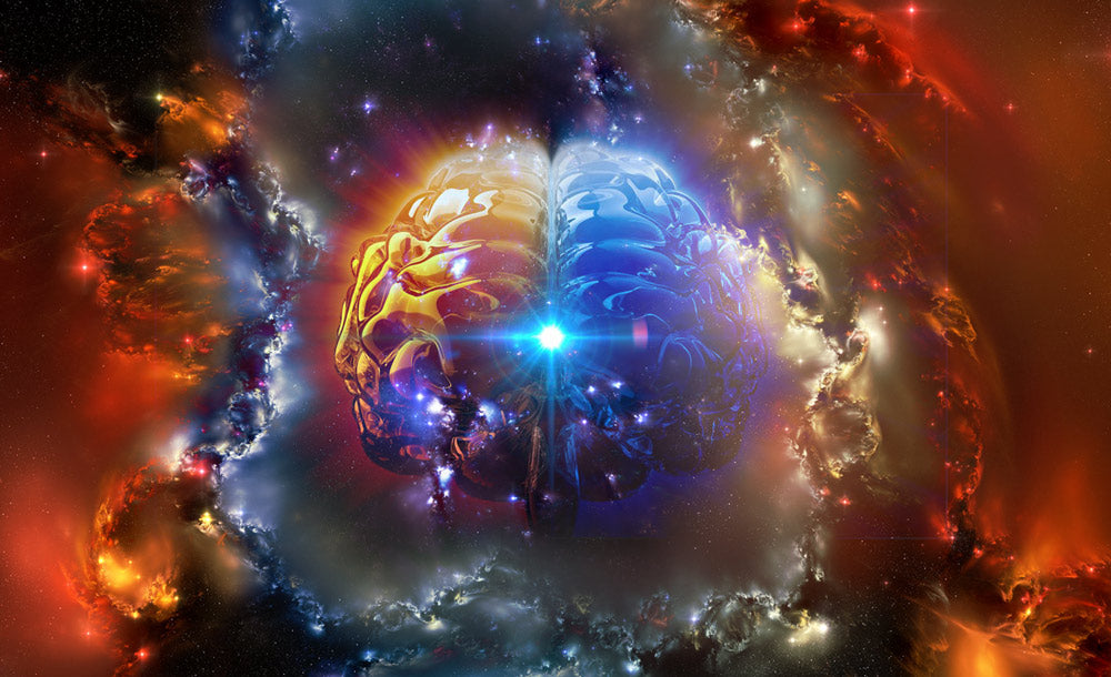 What is The Pineal Gland and How to Keep Yours Healthy