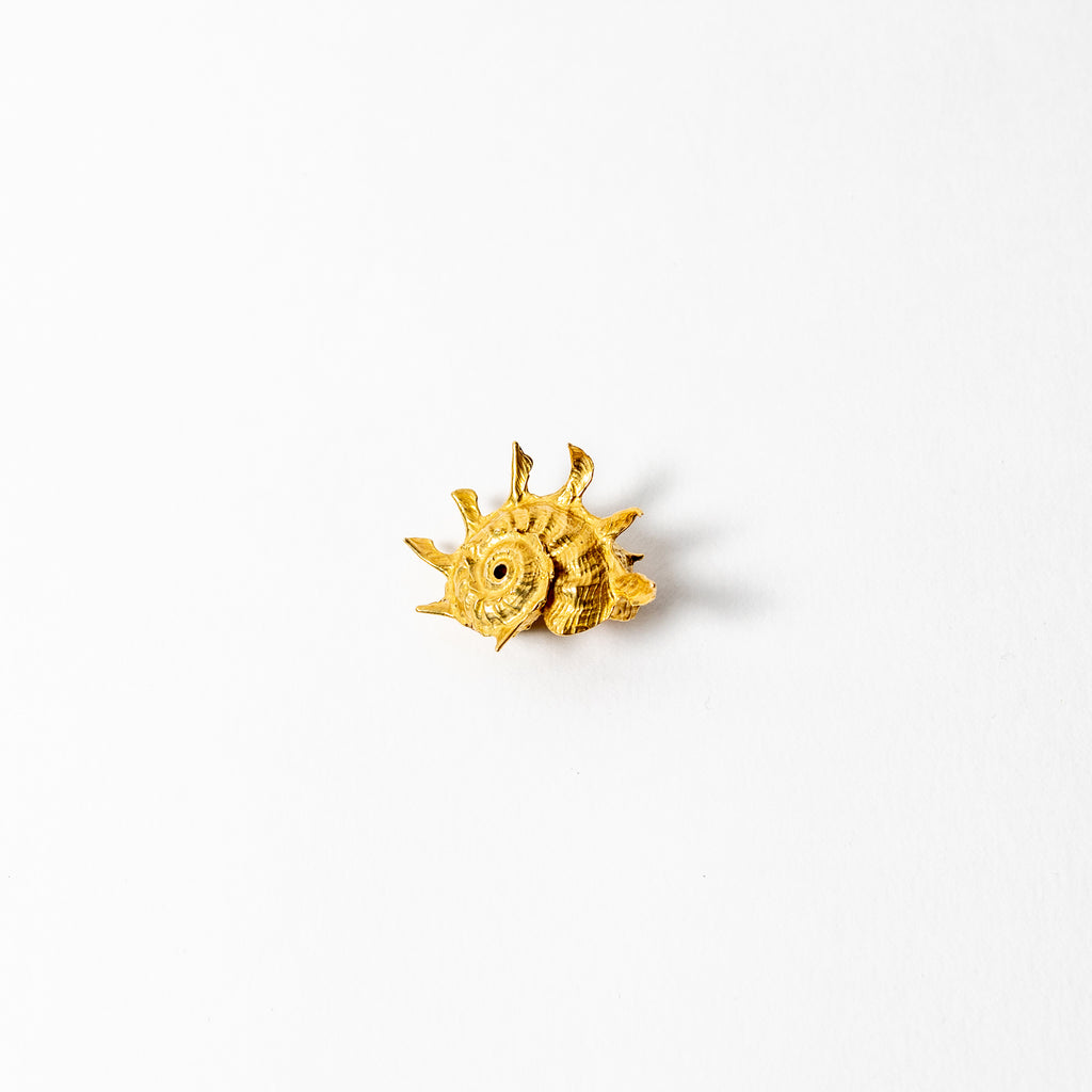 Shell Curiosity Incense Holder