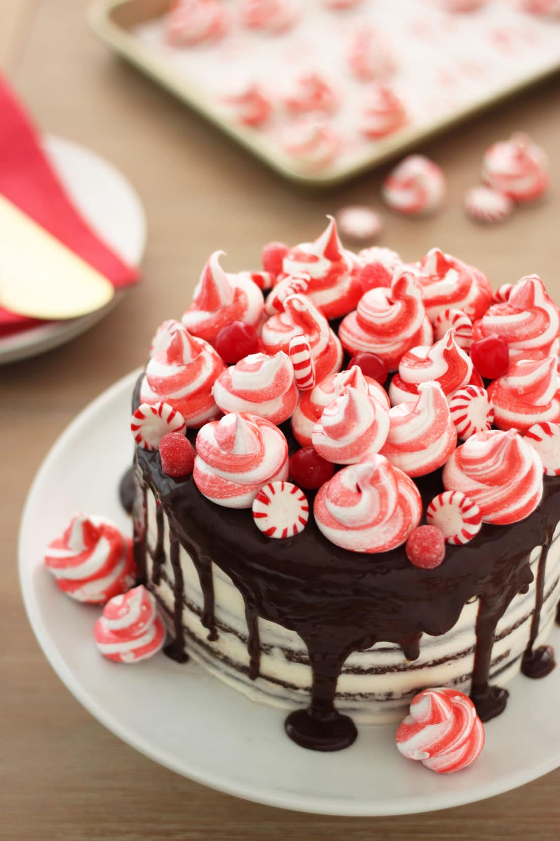 Miss Jones Baking Peppermint Chocolate Layer Cake with Chocolate Ganache picture of top of cake