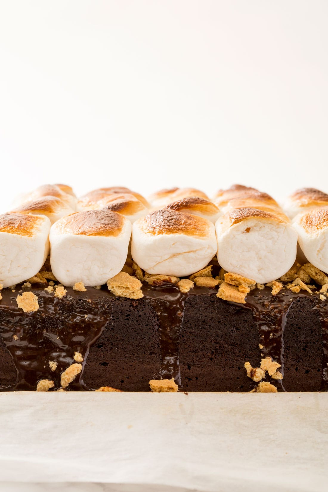 Close up of the top of toasted marshmallows on Miss Jones Chocolate S'mores Poke Cake