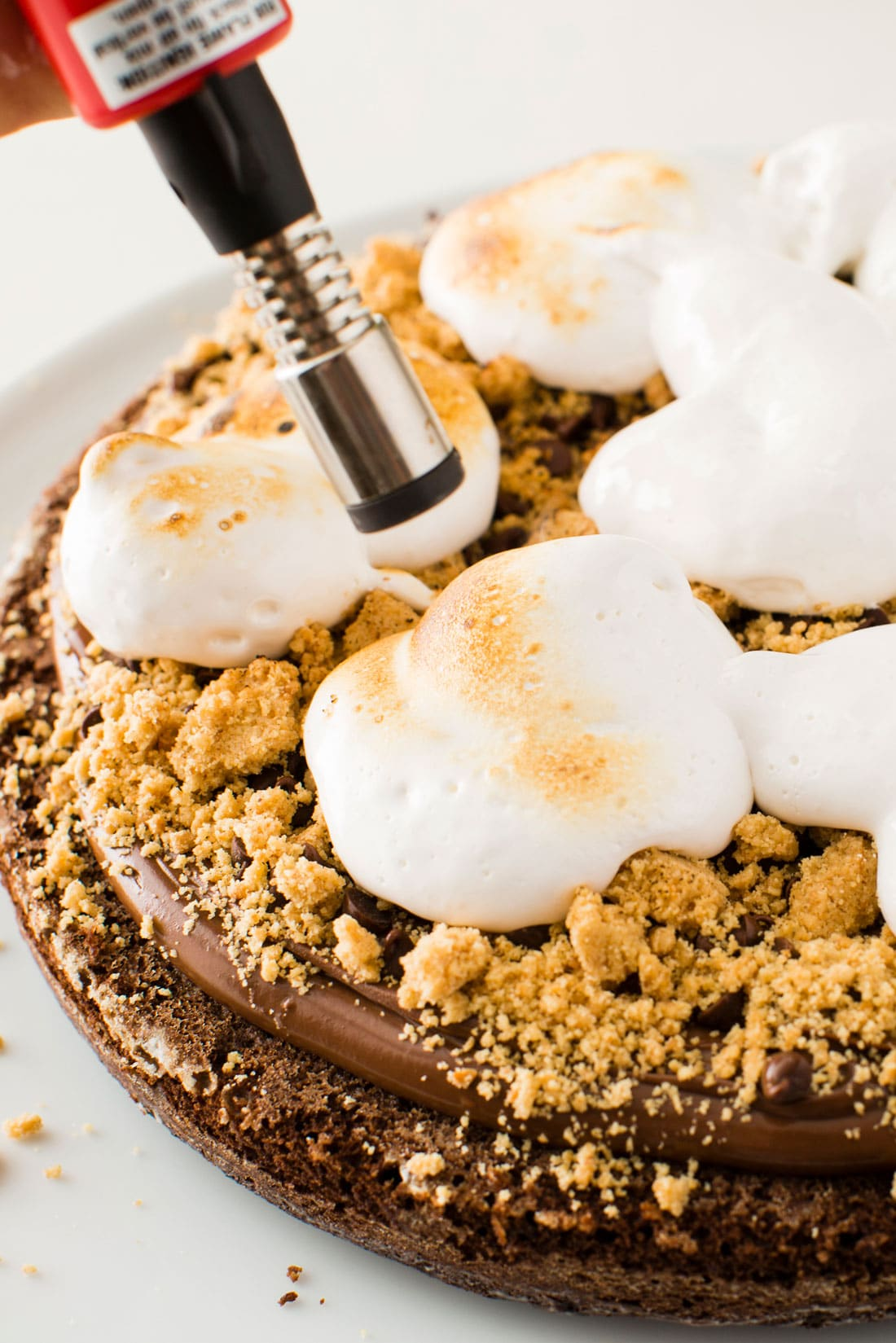 Closeup image of marshmallows on top of Miss Jones Baking Co Salted Nutella S'more Cake