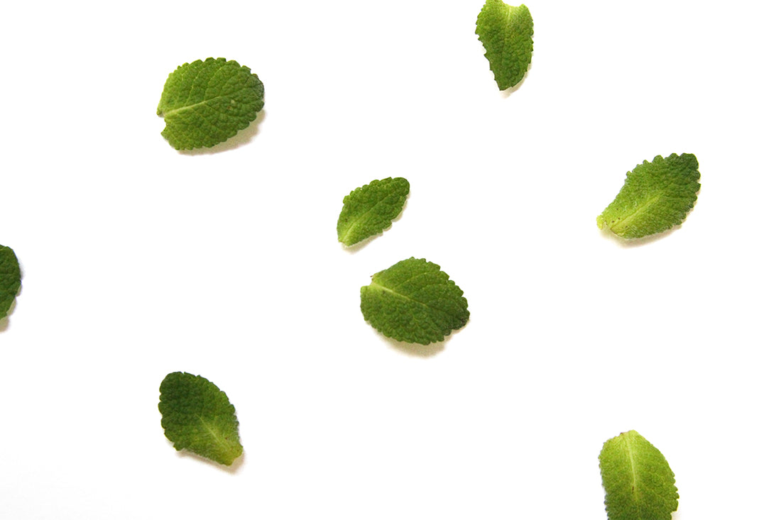 Image of mint leaves used for Miss Jones Baking Co Thin Mint Donuts