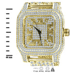 ICE Gold CZ Watch