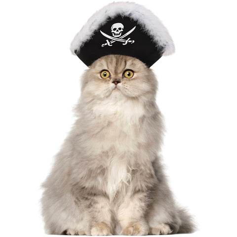 Pirate Cat Hat