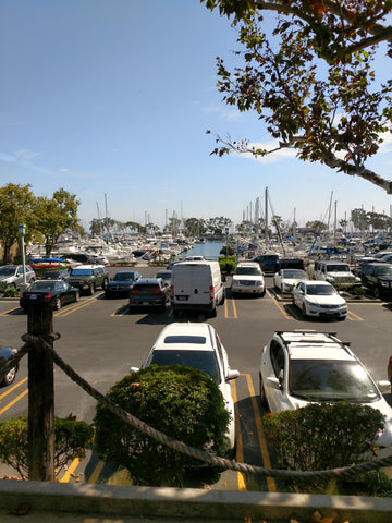 View of Harbor From Our Shop