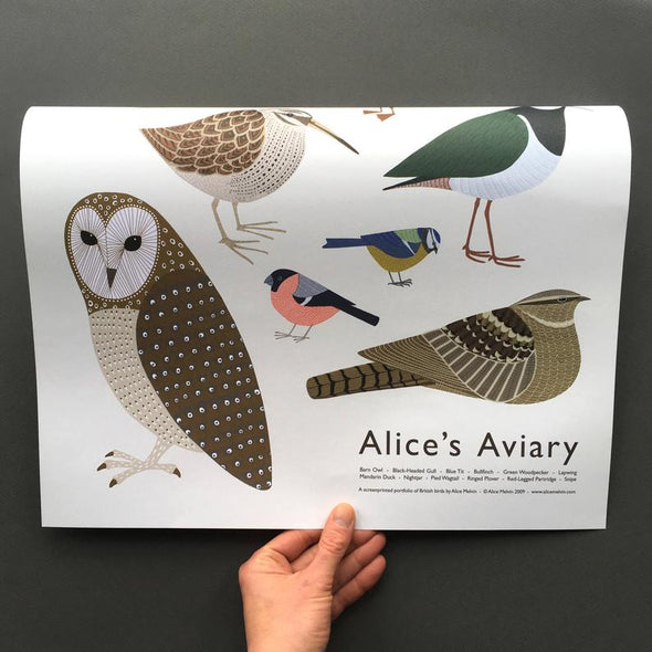 folded british birds poster by alice melvin
