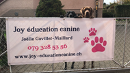 Joy éducation canine