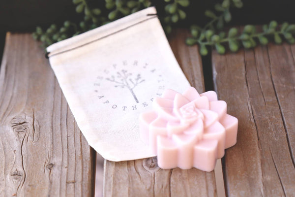 Agave Succulent Soap