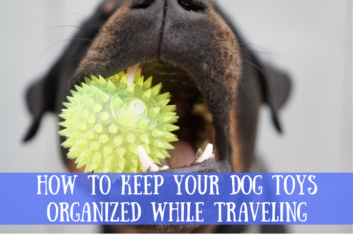 How to Keep Your Dog Toys Organized While Traveling