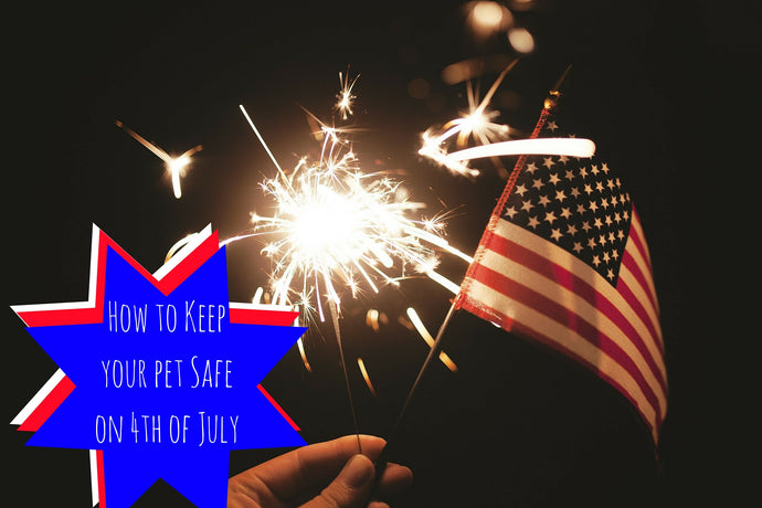 Keeping Your Pets Safe on 4th of July