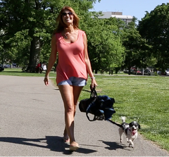 Women carrying a chair folded with Wrapsit and walking a dog.